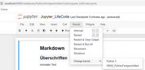 Python jupyter Kernel auswählen